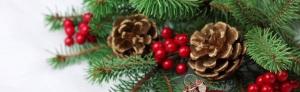 kerst-website-bp1.155131